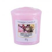 Yankee Candle Fresh Cut Roses vonná svíčka 49 g