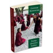 Esenta doctrinei budiste/Gonsar Rinpoche