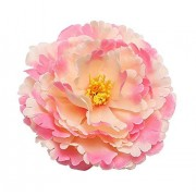 Kewl Fashion Women's Bohemia Peony Flowers Hairpin Hair Clip Flower Brooch (Nude Pink)