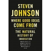 Where Good Ideas Come from: The Natural History of Innovation, Hardcover