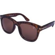 TOM MARTIN Wayfarer Sunglasses(Brown)