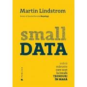 Small Data Indicii marunte care scot la iveala trenduri in masa/Martin Lindstrom