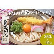 国産原料使用 農協の角太うどん(250g入×10束)