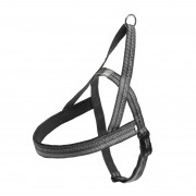 Equip Dog T Harness Active