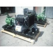 Motopompa diesel presiune pt. irigatii Lombardini LDW1404