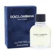 Dolce&Gabbana Pour Homme eau de toilette 75 ml Uomo