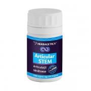 Articular stem 120cps