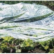 Film de forçage pour SEMIS et PLANTS 10 x 1,5 m
