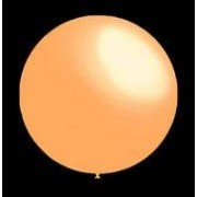 ballonnenparade 100 stuks - Decoratieve ballonnen - 30 cm - skin professionele kwaliteit