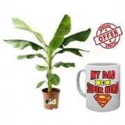 ES BANANA PLANT NATURAL With Freebies Mug