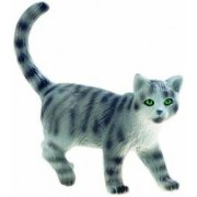 Pisica vargata Minka