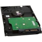 WD Green Power 160 GB Desktop Internal Hard Disk Drive (WD1600AVVS1)