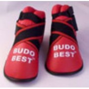 Botosei kickboxing Budo Best