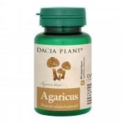 DACIA PLANT AGARICUS BLAZEI 60CPR