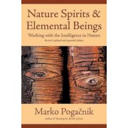 Nature Spirits & Elemental Beings: Working with the Intelligence in Nature, Paperback