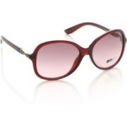 Opium Over-sized Sunglasses(Brown, Pink)