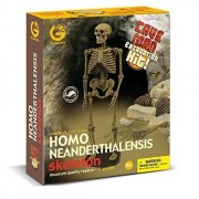 Geoworld Cave Man Homo Neanderthalensis Skeleton Fossil Excavation Kit