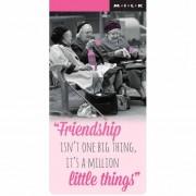 magnetische boekenlegger M.I.L.K. - friendship is not one big thing, it is a million little things
