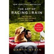 The Art of Racing in the Rain Tie-In, Paperback/Garth Stein