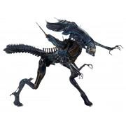 Decoraţiune (figurină) Alien - Ultra Deluxe Action Figure Xenomorph Queen - NECA51385