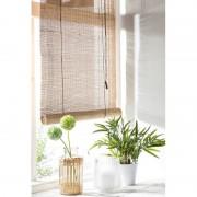 Xenos Rolgordijn bamboe - 180x180 cm