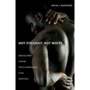 Not Straight, Not White: Black Gay Men from the March on Washington to the AIDS Crisis, Hardcover