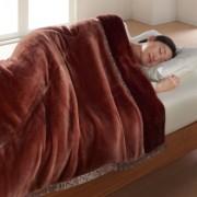 ダブル(【TEIJIN】あったか毛布 掛け毛布)