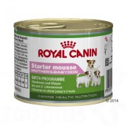 Royal Canin Starter Mousse Mother & Babydog Hondenvoer - Dubbelpak: 24 x 195 g