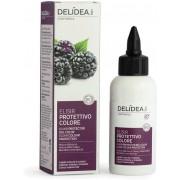 Delidea Blackberry & Apricot Colour Protection Elixir - 75 ml