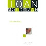 Ioan moldovan. opera poetica/Ioan Moldovan