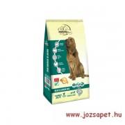 Authentic Gold Basic & Senior kutyatáp 15kg