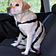 Trixie колан за кучета - размер S: обиколка на гърдите 30 - 60 cм