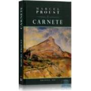 Carnete - Marcel Proust