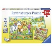 Puzzle Animale De Curte 3X49 Piese