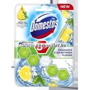 Domestos Power 5 Green Tea & Citrus Wc frissítő blokk 55g