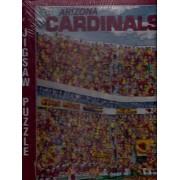NFL Arizona Cardinals Fandemonium Jigsaw Puzzle 1994 John Holliday 513 Pieces