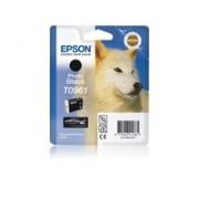 Epson T096 Photo Black Ink Stylus R2880