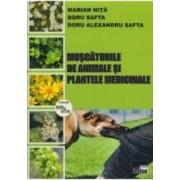 Muscaturile De Animale Si Plantele Medicinale - Marian Nita Doru Safta