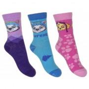 Paw Patrol Nickelodeon Paw Patrol sokken 3-pak Everest