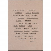 Jollygoodfellow Observationer Poster, Brun