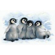 Funny Penguins