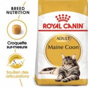 Royal Canin Breed Royal Canin Chat Maine Coon 31 Adult 2 x 10 kg