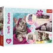 Puzzle Trefl, Pisici dragalase, 160 piese