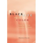 Black, White, and in Color: Essays on American Literature and Culture, Paperback/Hortense J. Spillers