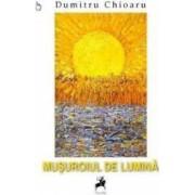 Musuroiul de lumina - Dumitru Chioaru