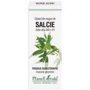 Extract Muguri Salcie 50ml PlantExtrakt