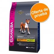 Oferta de prueba: Eukanuba pienso para perros de 2 a 3 kg - Adult razas medianas y pequeñas con cordero y arroz 2,5 kg