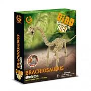 Geoworld-Dino Excavation Kit - Brachiosaurus Skeleton