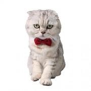 Yolispa Gato Perro Pajarita Collar Pequeño Pajarita Ajustable para Gatos Perros (Rojo L)