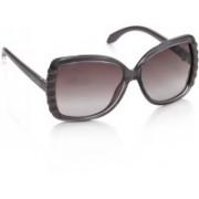 Roberto Cavalli Over-sized Sunglasses(Violet)